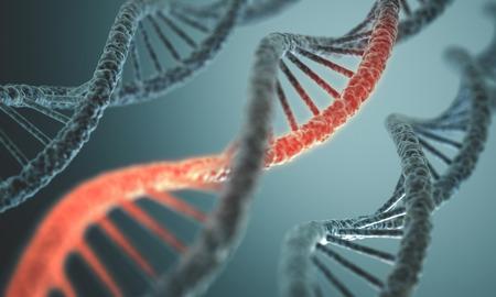 Foto de Long structure of the DNA double helix in depth of view. - Imagen libre de derechos