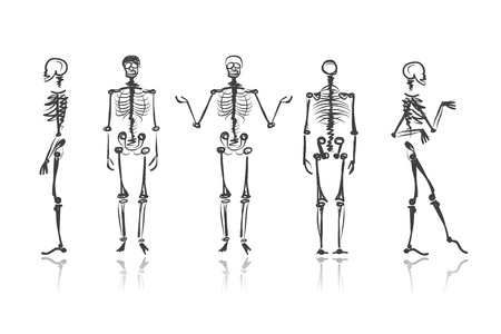 Ilustración de Skeleton sketches for your design - Imagen libre de derechos