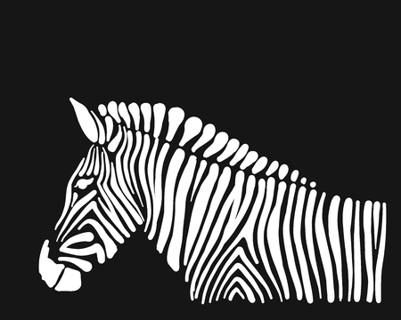 Illustration pour Zebra, sketch for your design - image libre de droit
