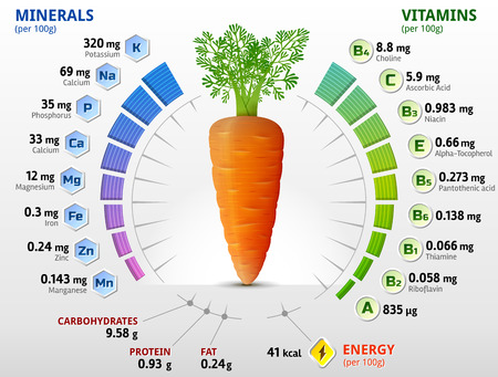 Ilustración de Vitamins and minerals of carrot tuber. Infographics about nutrients in carrot. Qualitative vector illustration about vitamins carrot vegetables health food nutrients diet etc - Imagen libre de derechos