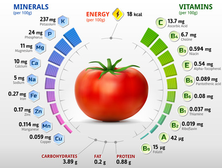 Illustration pour Vitamins and minerals of tomato. Infographics about nutrients in tomato. Qualitative vector illustration about tomato vitamins vegetables health food nutrients diet etc - image libre de droit