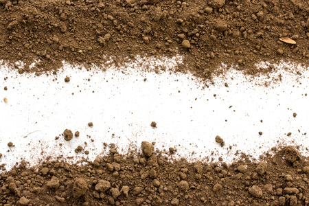 Photo for Dirty earth on white background. Natural soil texture - Royalty Free Image