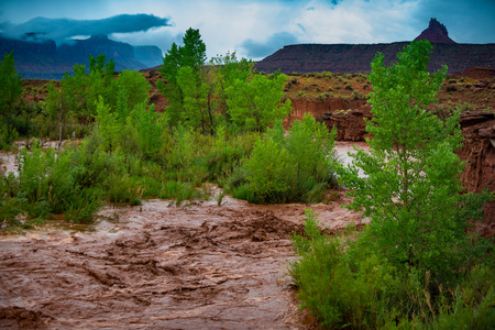 Photo pour Flash Flood Waters after the storm flows through the Canyonlands Needle District Utah USA - image libre de droit