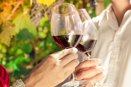 Photo for Vintner couple clinking wine glasses in vineyard, close-up - Royalty Free Image