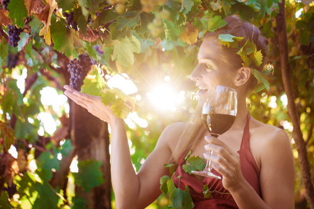 Photo for Wine queen visiting her vineyard with sun shining though the vines - Royalty Free Image