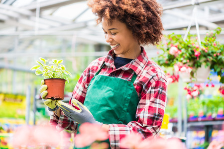 Photo pour Latin American young woman smiling happy while holding a decorative potted houseplant with green leaves during work at a modern flower market - image libre de droit