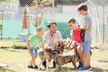 Photo for Mom with her sons walking dogs of an animal shelter to get to know them - Royalty Free Image