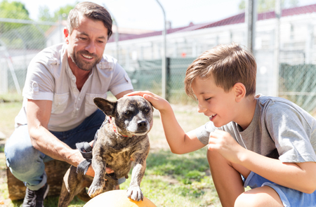 Photo pour Dad and his son taking care of abandoned dog in animal shelter playing with him - image libre de droit