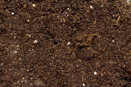Photo for Pile of soil for plant isolated on white background - Royalty Free Image