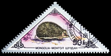 Foto de MOSCOW, RUSSIA - SEPTEMBER 26, 2018: A stamp printed in Mongolia shows European Hedgehog (Erinaceus europaeus), Various mammals serie, circa 1983 - Imagen libre de derechos