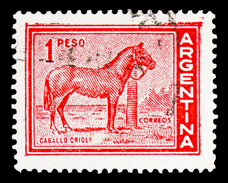 Foto de MOSCOW, RUSSIA - FEBRUARY 10, 2019: A stamp printed in Argentina shows Horse (Equus ferus caballus), Personalities and Landscapes serie, circa 1959 - Imagen libre de derechos