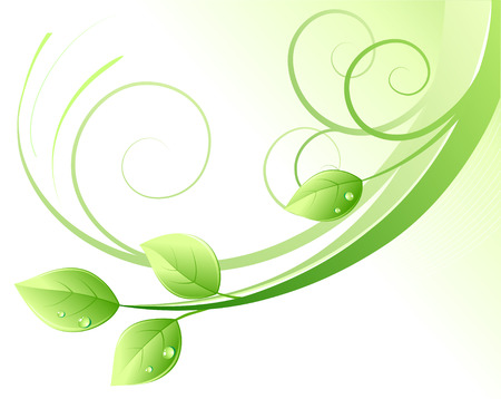 Vector illustration of green abstract background and leaves with water drops