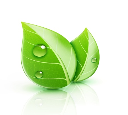 Illustration pour Vector illustration of ecology concept icon with glossy green leaves - image libre de droit