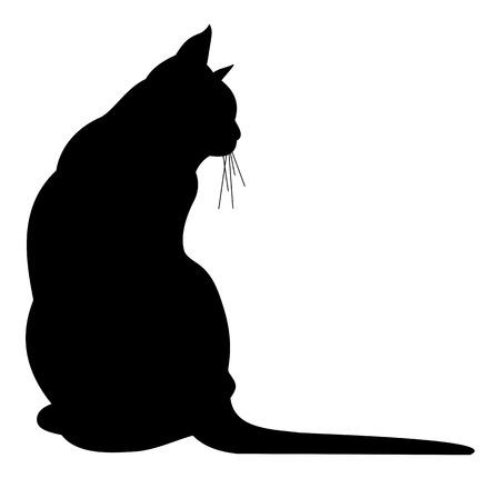 Illustration pour Black cat silhouette - image libre de droit