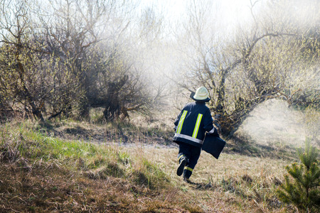 Photo for Brave firefighter running to stop the forest fire. Burning meadow. Irresponsible people cleaning fields from dry grass and reeds. Forest fire and destruction in nature. - Royalty Free Image