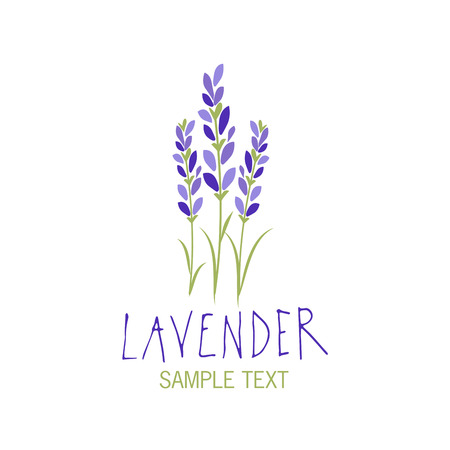 Illustration for Lavender flower icon design, text hand drawn. - Royalty Free Image