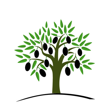 Ilustración de Olive tree with green leaves. Tree with black olives. Vector illustration on a white background. Flat style. - Imagen libre de derechos