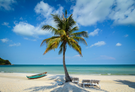 Foto de White sand beach with coconut tree and a boat in Phu Quoc Island, Vietnam. Phu Quoc Island boasts idyllic beaches, romantic sunsets and evergreen forests. - Imagen libre de derechos