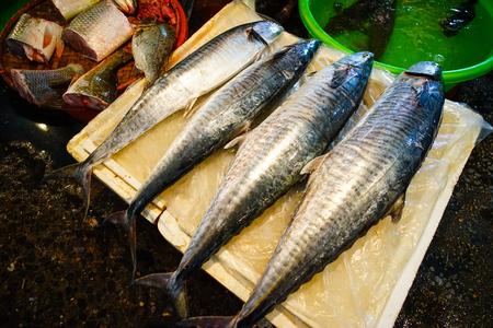 Photo pour Fresh fish at local market in Ha Long, Vietnam. - image libre de droit