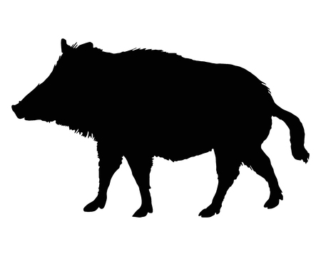 The black silhouette of a boar on white