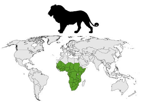Lion distribution