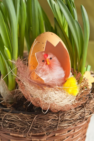 Toy baby chicken with eggshell in nest
