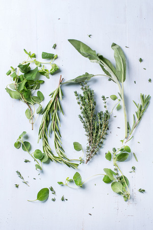 Foto de Assortment of fresh herbs thyme, rosemary, sage and oregano over light blue wooden background. Top view - Imagen libre de derechos