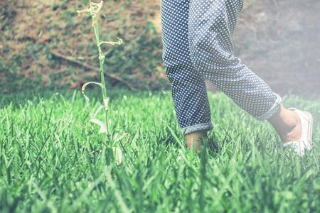 Photo pour Legs of women walking on a green meadow. - image libre de droit