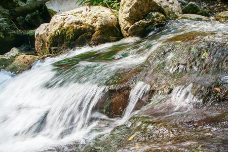Foto de beautiful environment around the river Bussento resurgence, a natural reserve   in Cilento national park - Imagen libre de derechos