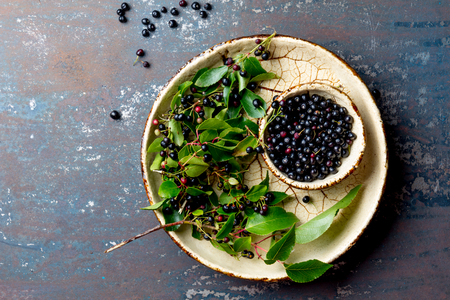 Foto de Superfood MAQUI BERRY. Superfoods antioxidant of indian mapuche, Chile. Bowl of fresh maqui berry and maqui berry tree branch on metal background, top view. - Imagen libre de derechos