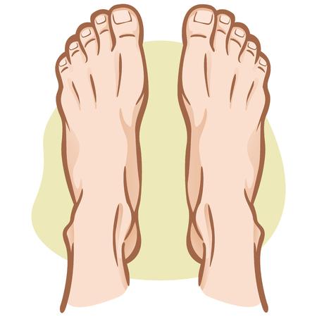 Ilustración de Illustration person, pair of human feet, Caucasian, top view. Ideal for catalogs, informational and institutional guides - Imagen libre de derechos