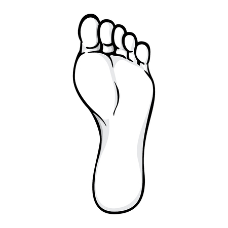 Ilustración de Illustration of body part, sole or sole of right foot, black white. Ideal for catalogs, information and institutional material - Imagen libre de derechos