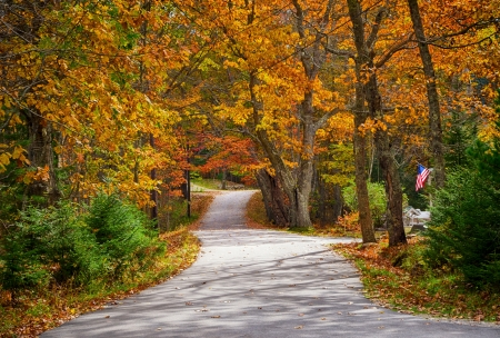 Winding country road in autumn  mural