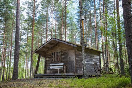 Photo pour Old wooden cabin in the woods - image libre de droit