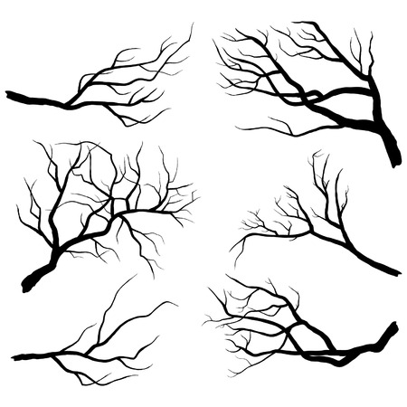 Illustration for Branch Silhouettes - Royalty Free Image