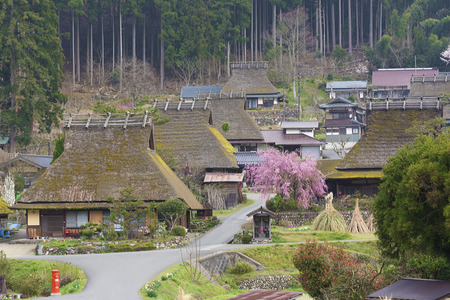 Photo pour Rural landscape of Historical village Miyama in Kyoto, Japan - image libre de droit