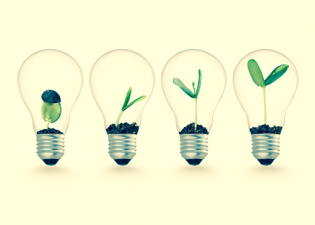 Photo for Plant growing in lightbulb , ecology ideas growth concept - Royalty Free Image