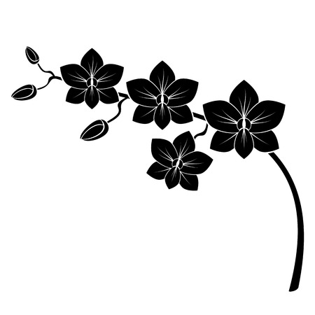 Photo for orchid branch silhouette vector for design - Royalty Free Image