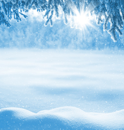 Photo pour Winter background with snow-drifts and the christmas tree in frost - image libre de droit