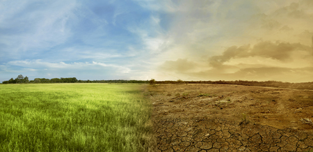 Photo for Landscape of meadow field with the changing environment concept of climate change - Royalty Free Image