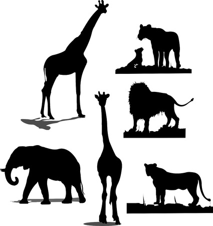 African animal silhouettes. Black and white silhouettes