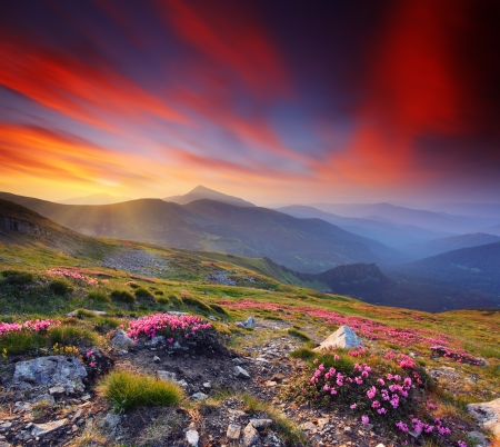 Photo pour Landscape with mountains under morning sky with clouds - image libre de droit