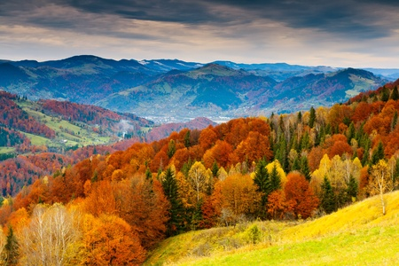 Photo pour the mountain autumn landscape with colorful forest - image libre de droit