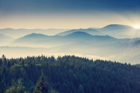 Photo pour Beautiful sunny day is in mountain landscape. Carpathian, Ukraine, Europe. - image libre de droit