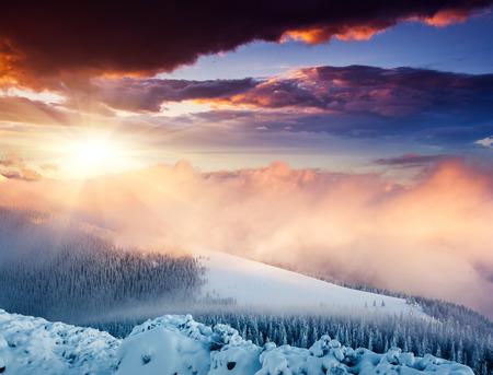 Foto de Fantastic evening winter landscape. Colorful overcast sky. Carpathian, Ukraine, Europe. Beauty world. - Imagen libre de derechos
