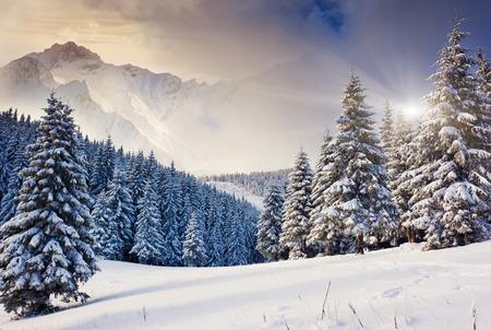 Photo pour Fantastic evening winter landscape. Dramatic overcast sky. Creative collage. Beauty world. - image libre de droit