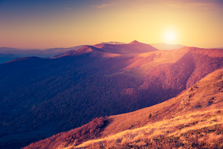 Foto de Beautiful sunny day is in mountain landscape. Carpathian, Ukraine, Europe.  - Imagen libre de derechos