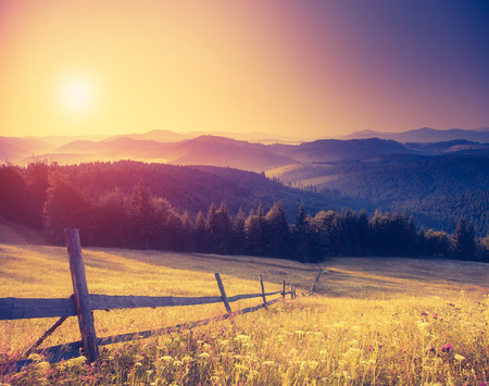Fantastic sunny hills under morning sky. Dramatic scenery. Carpathian, Ukraine, Europe.