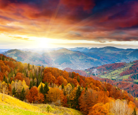 Photo for the mountain autumn landscape with colorful forest - Royalty Free Image