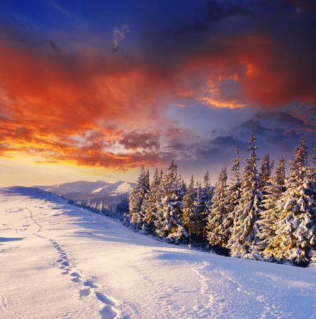 Foto de majestic sunset in the winter mountains landscape - Imagen libre de derechos